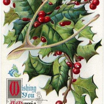 1000+ ideas about Holly Images on Pinterest.