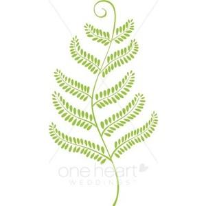 Fern leaf clipart.