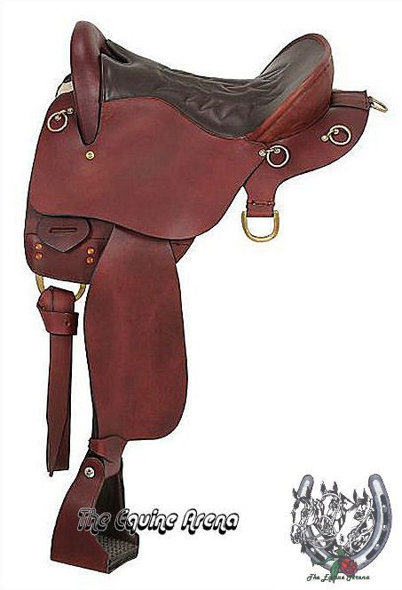 Saddles, Horns and King on Pinterest.