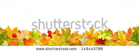Autumn Leaves Stock Photos, Royalty.