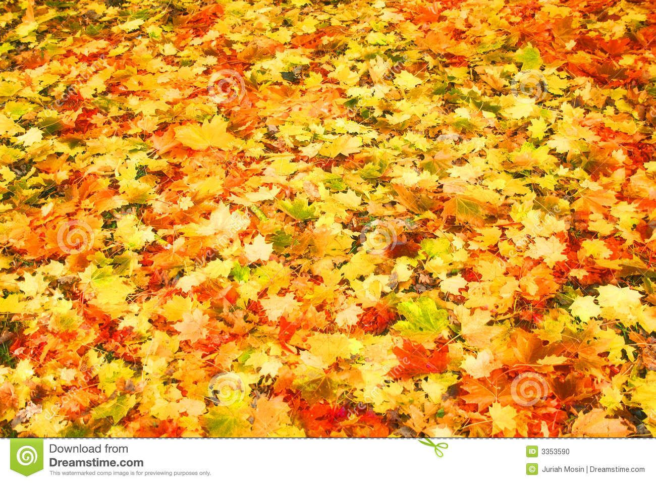 Piles Of Leaves On Ground Clipart.