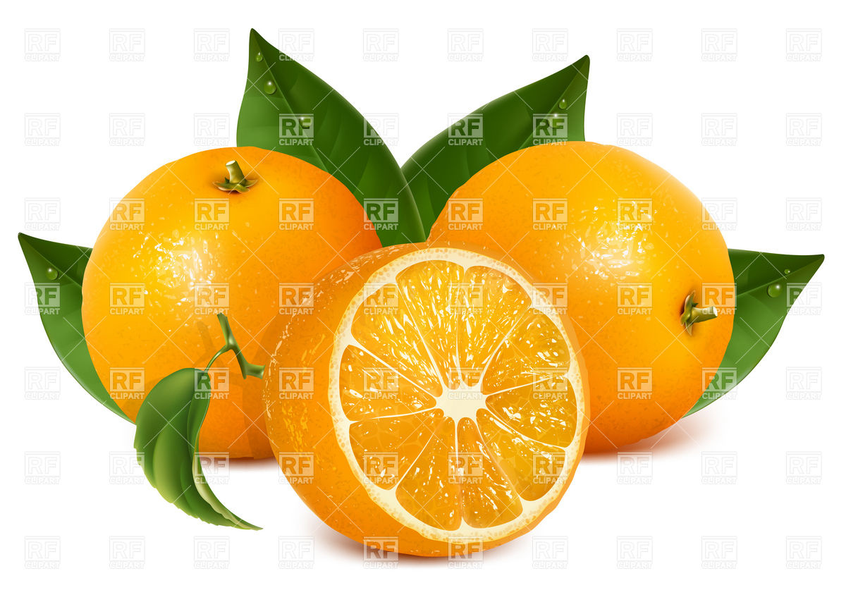 Half of orange and orange fruits with leaves Vector Image #5147.