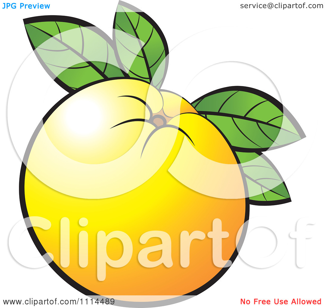 Clipart Orange Fruit With Leaves.