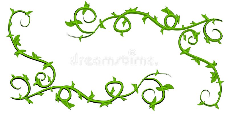Green Leaves Vine Clip Art stock illustration. Illustration.