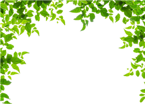 HD And Leaf Leaves Green Frames Borders Border Clipart.