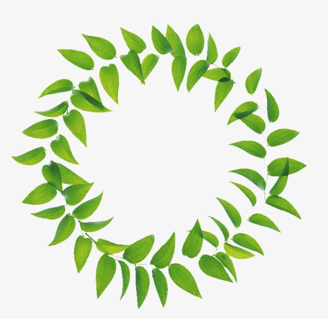 Green Leaves Combination Ring PNG, Clipart, Around, Circle.