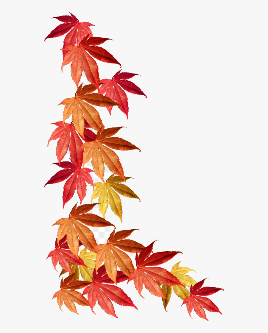 Fall Border Autumn Leaves Clipart Transparent Png.