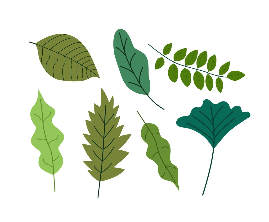 Flat Green Leaves Clipart Vector Vector Art & Graphics.