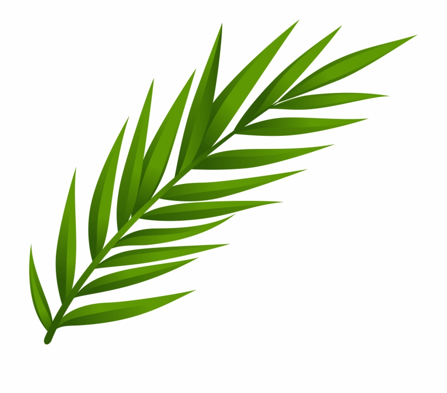 Leaves Clipart Png Free PNG Images & Clipart Download.
