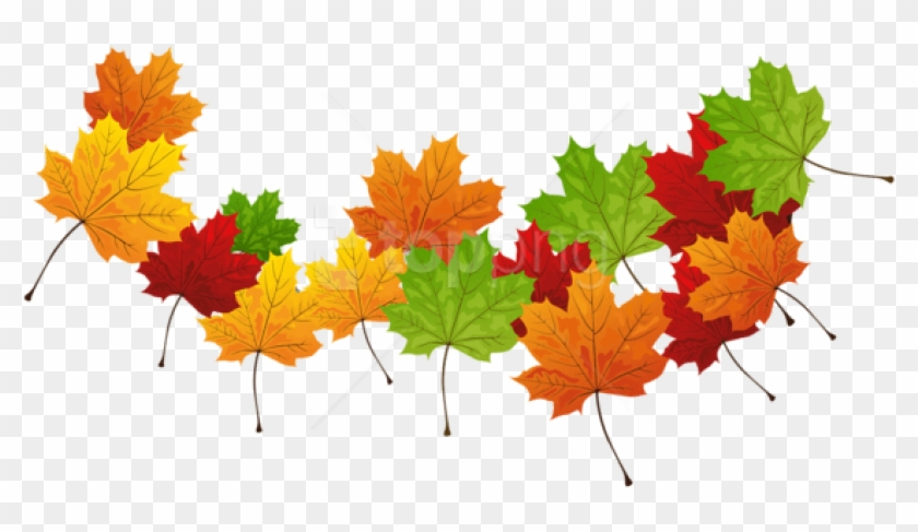 Free Png Download Fall Transparent Leaves Clipart Png.