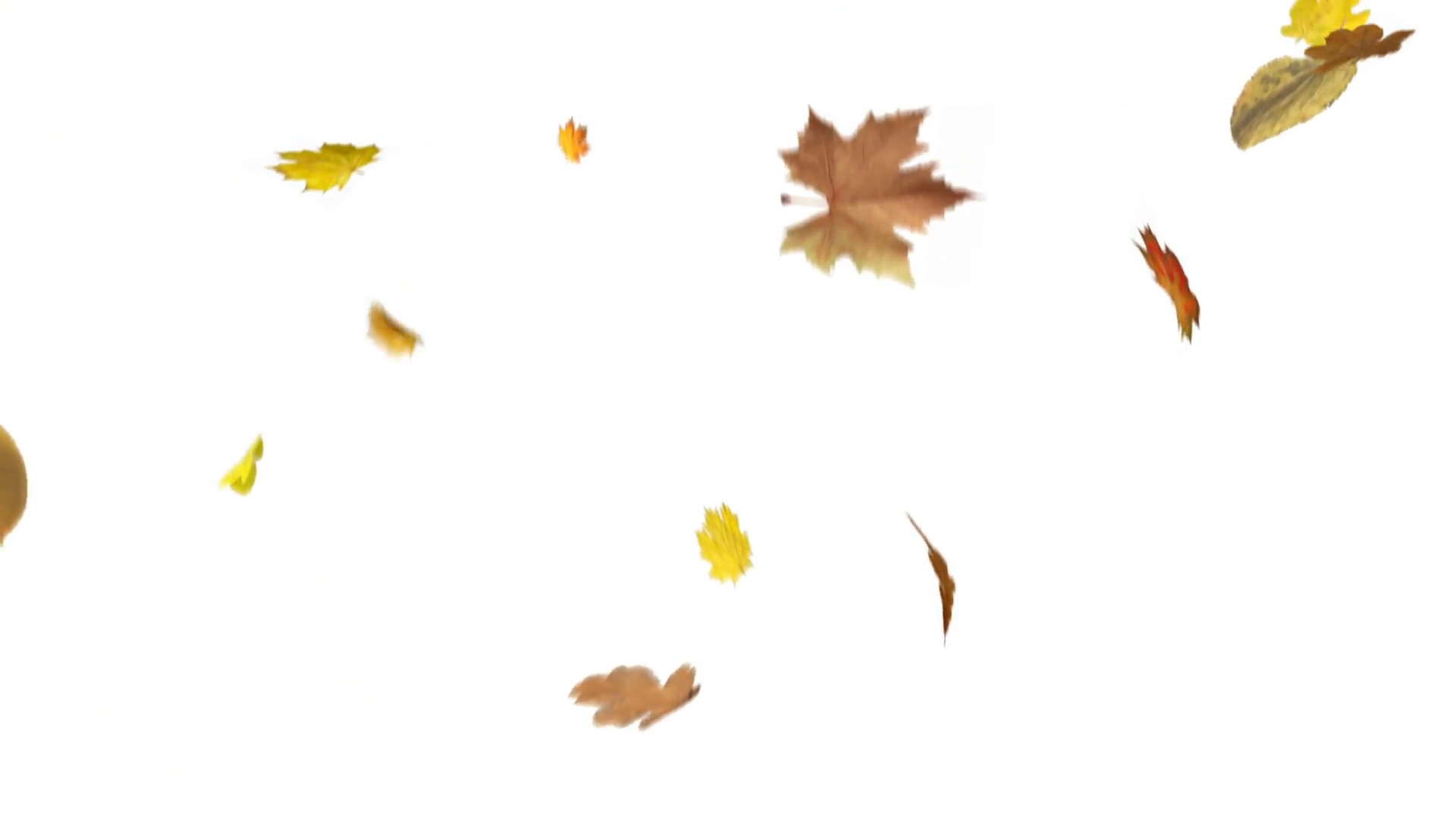 Leaves Falling Png (105+ images in Collection) Page 2.