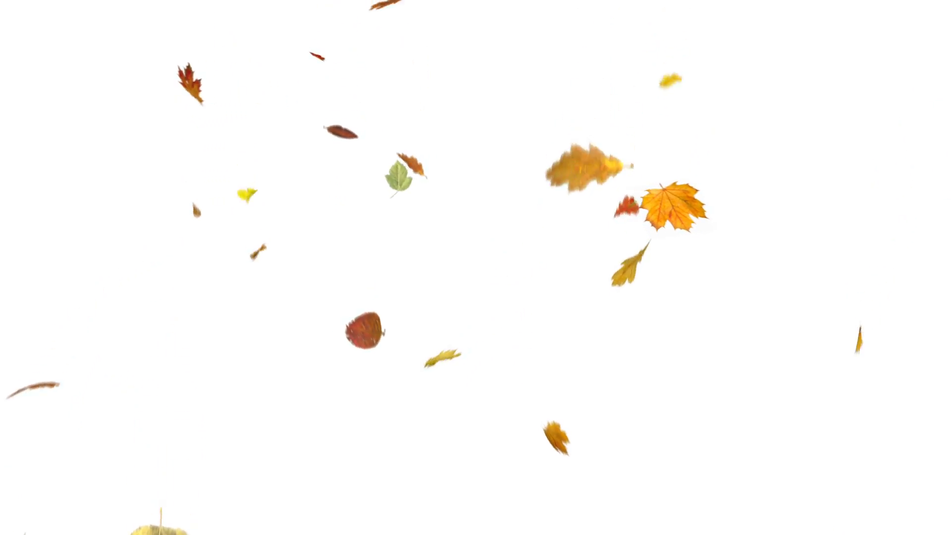 Leaves Falling Png (105+ images in Collection) Page 1.