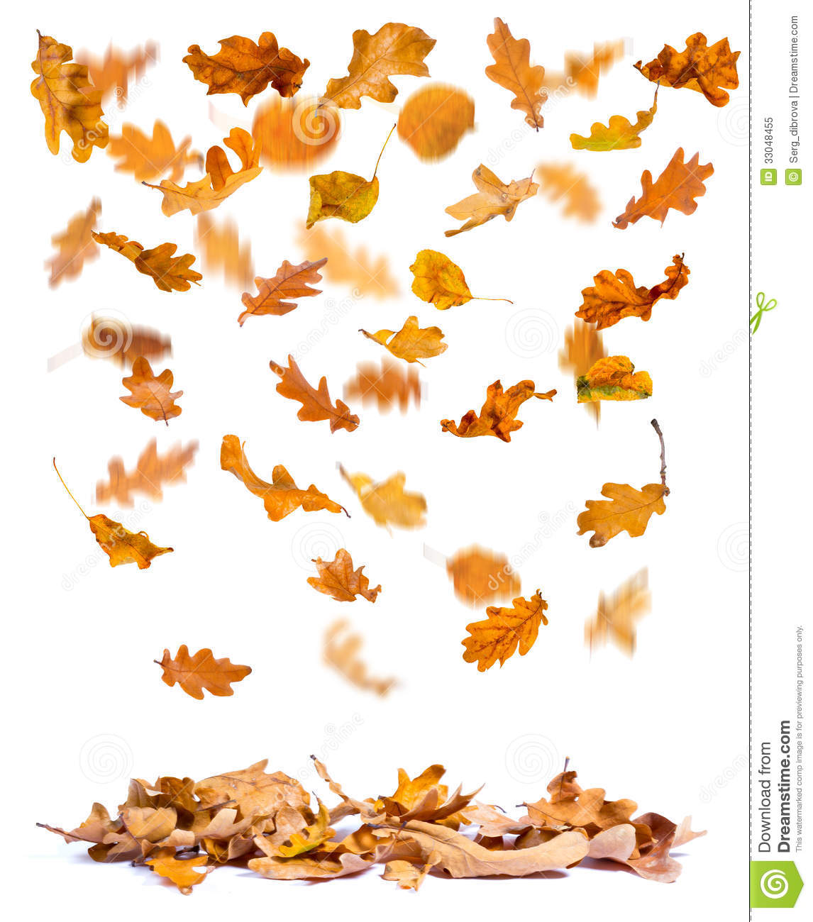 Animated Leaves Falling Clipart.