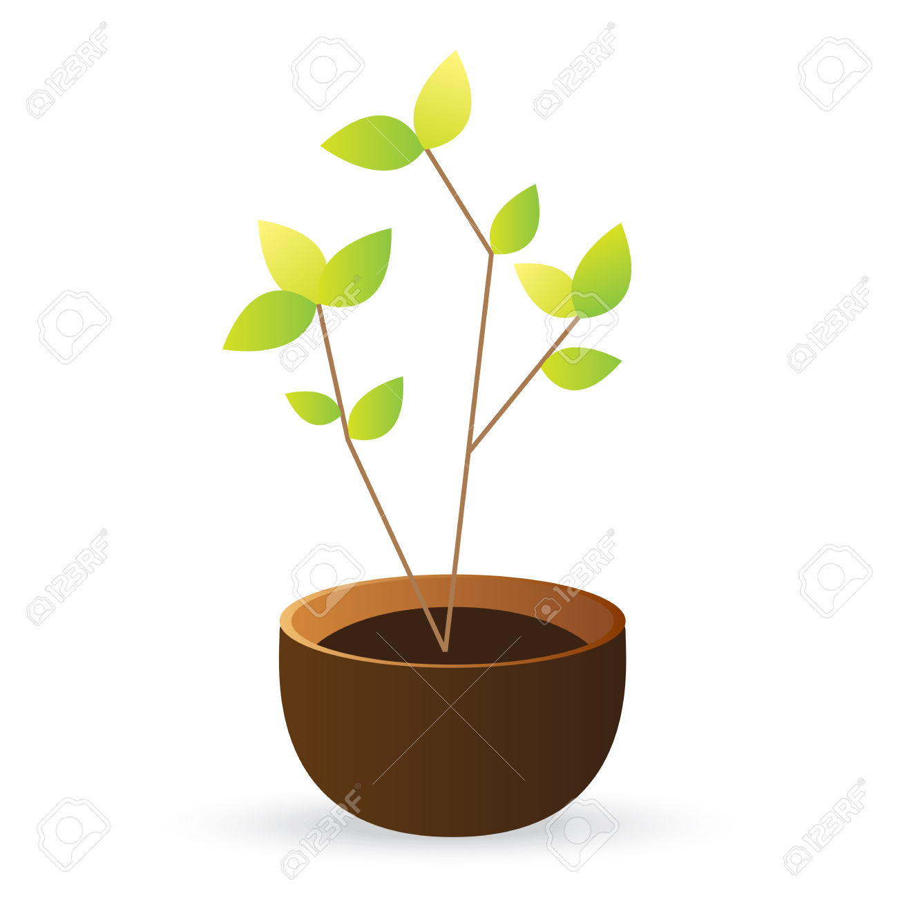 Grow Tree Green Leaves On White Background Royalty Free Cliparts.