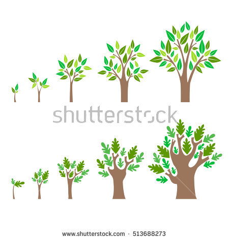 Growing Tree Stock Images, Royalty.