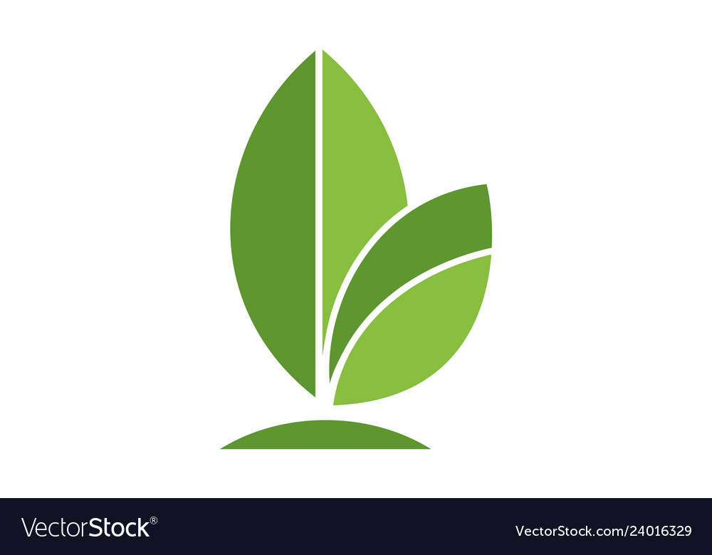 Green leaves logo icon.