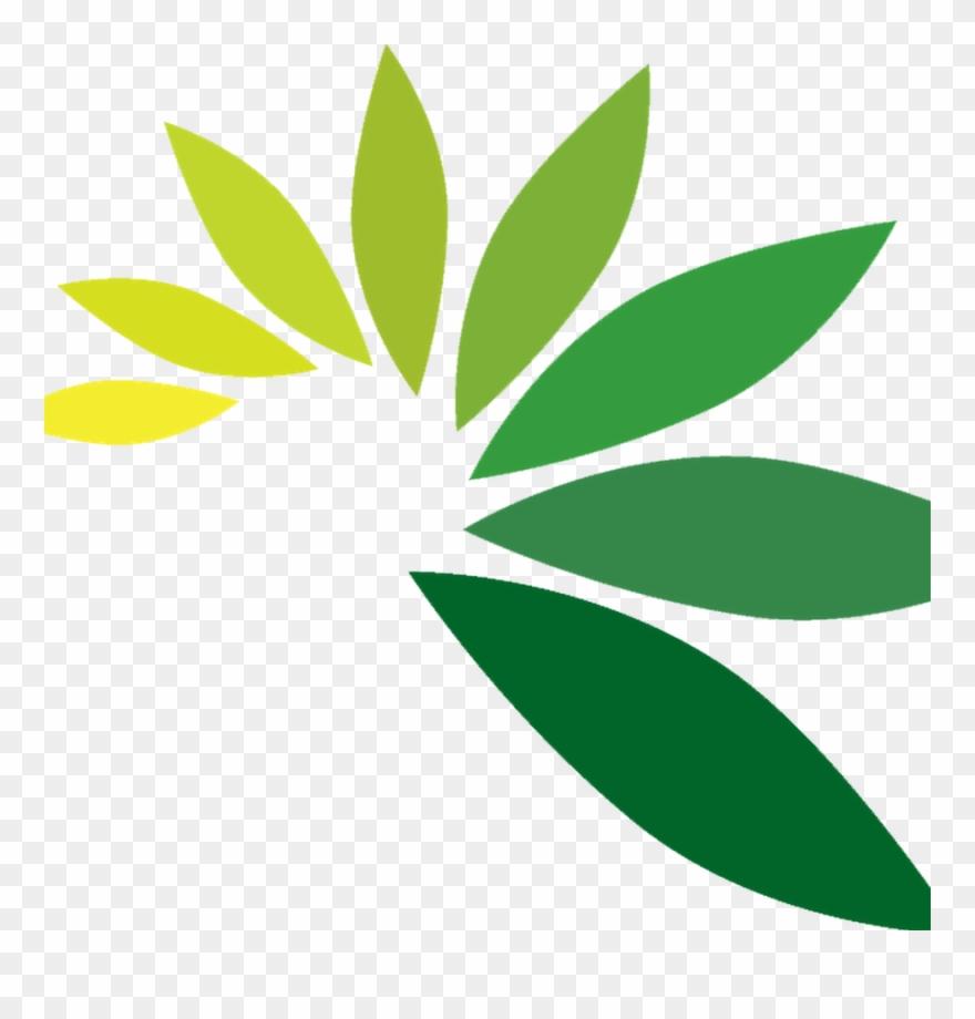 Leaf Logo Png.