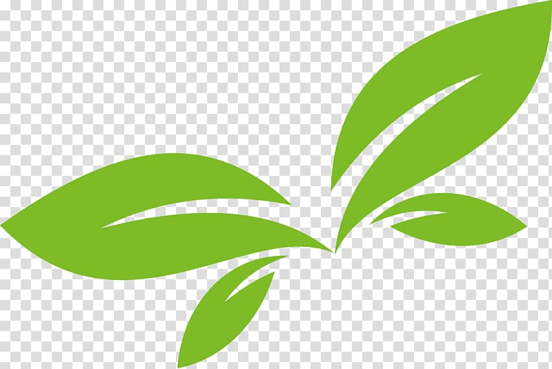 Green leaves animated illustration, Leaf Logo Euclidean.