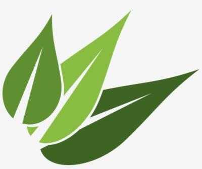Result for leaves logo png.