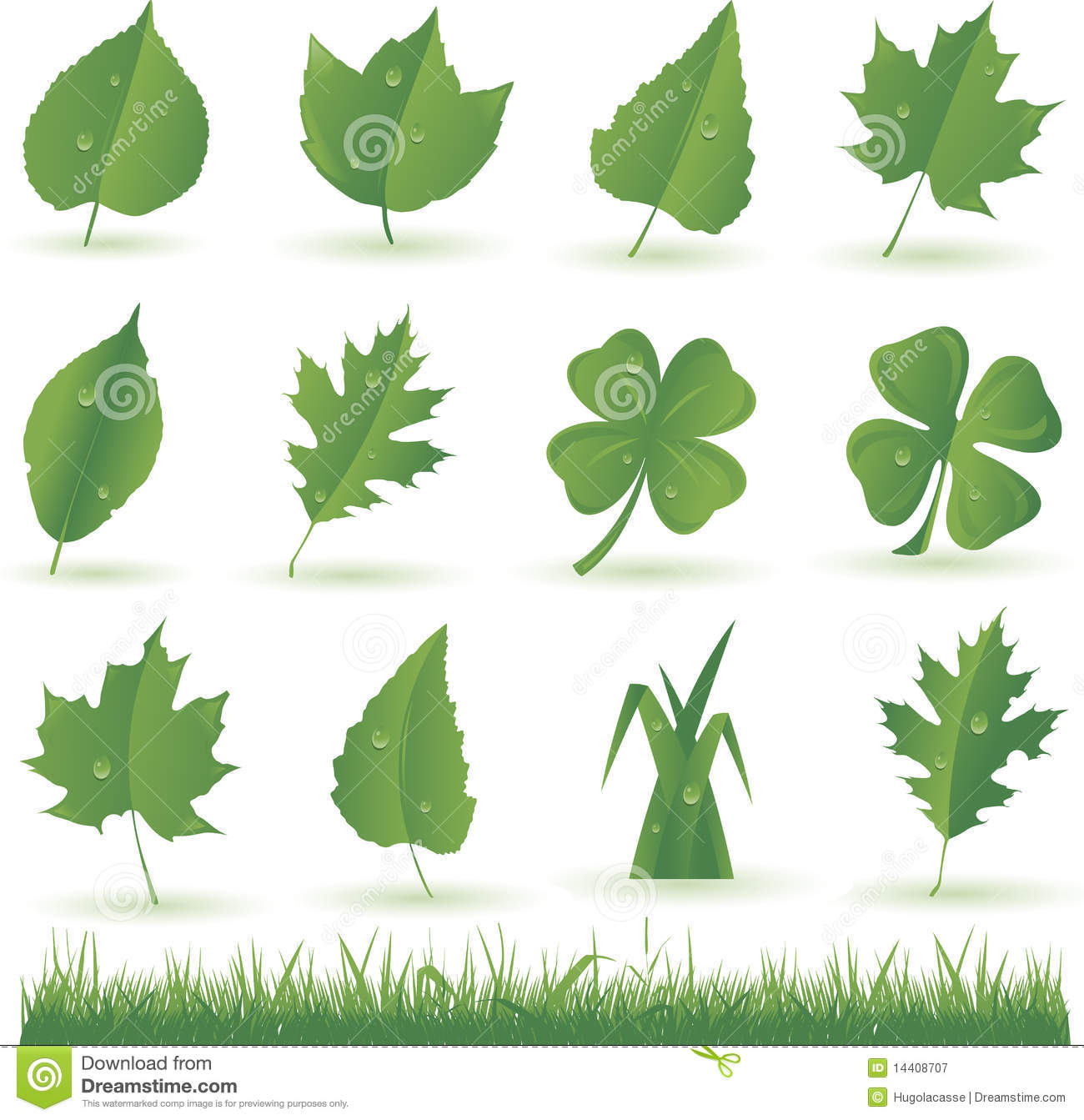 Vector Leaves And Grass Royalty Free Stock Photography.