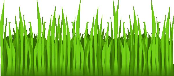 Grass Cartoon.