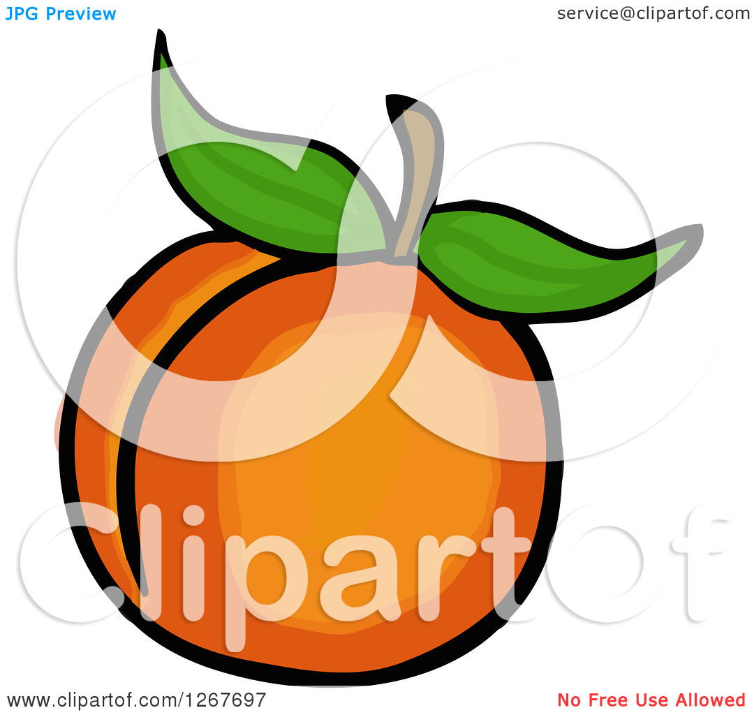 Clipart of a Peach with Leaves.