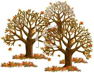 Clipart of Fall Colored Leaves and Trees.