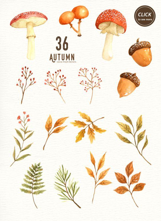 Autumn Leaf Watercolor Clipart.