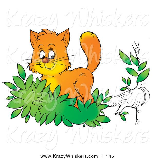 Critter Clipart of a Cute Orange Kitten Exploring the Outdoors.