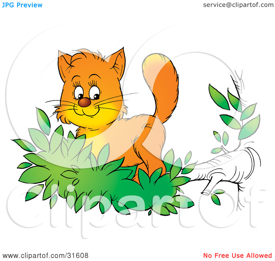 Clipart Illustration of a Cute Ginger Kitten Exploring The.