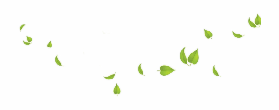 Green Leaves Transparent Background Free PNG Images.