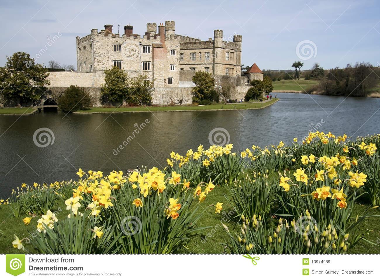Leeds Castle Gardens Spring Daffodils Kent Uk Royalty Free Stock.