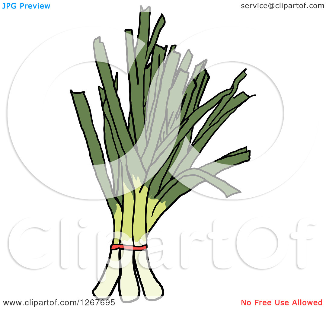 Clipart of Bunches of Leeks.