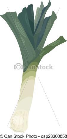 Clipart Vector of leek vegetable cartoon illustration.