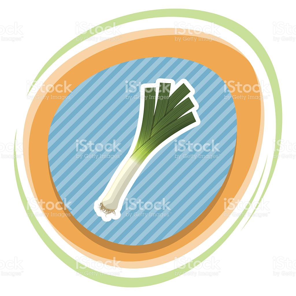 Leek Colorful Icon stock vector art 523042958.