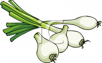 Clipart Picture of Spring Leeks.