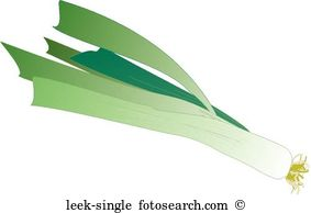Leek Illustrations and Stock Art. 131 leek illustration graphics.