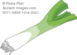 Clipart Illustration of a Leek (Escallion).