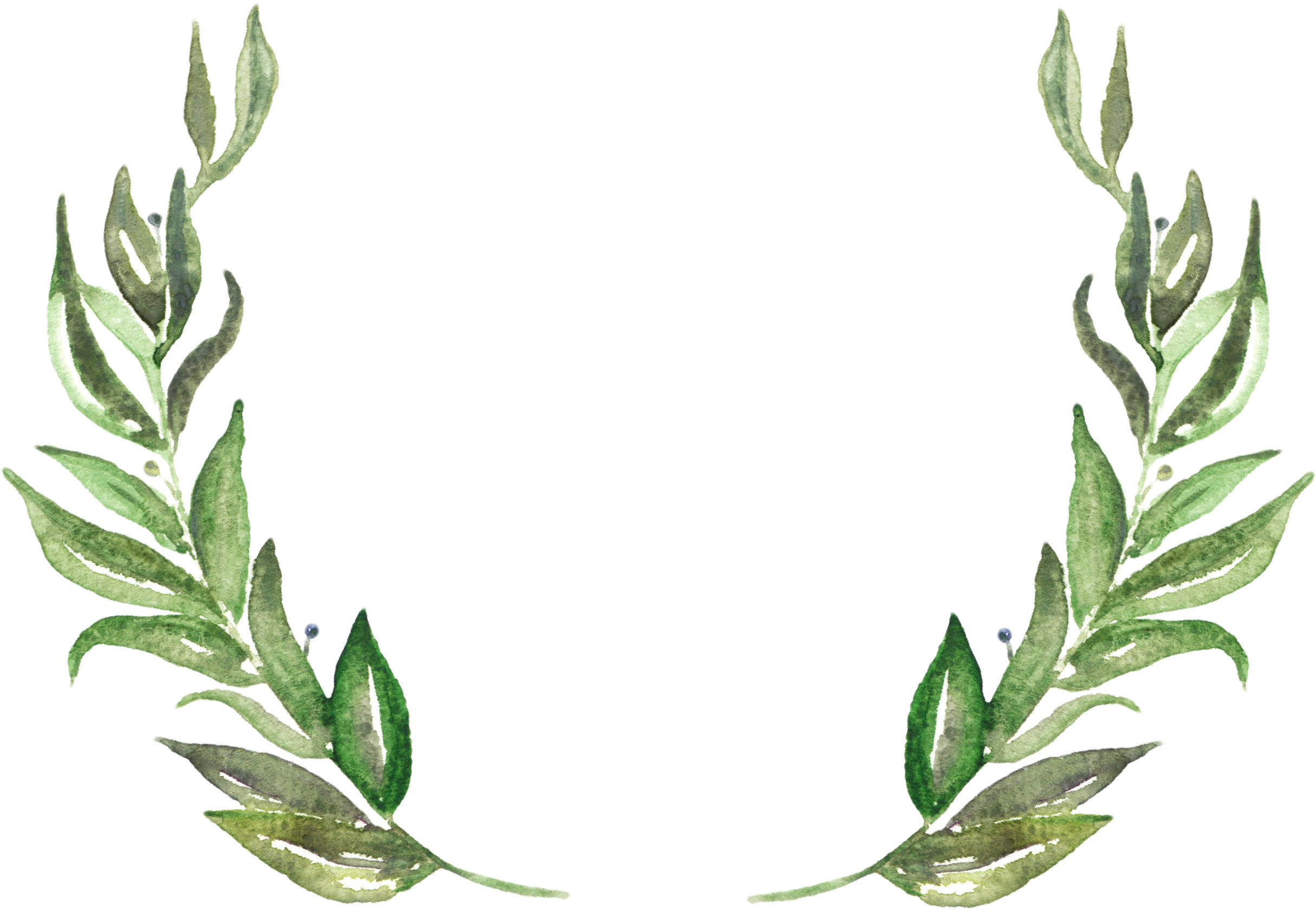 Download Leaves Png.