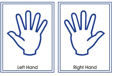 Free Left Hand Cliparts, Download Free Clip Art, Free Clip.