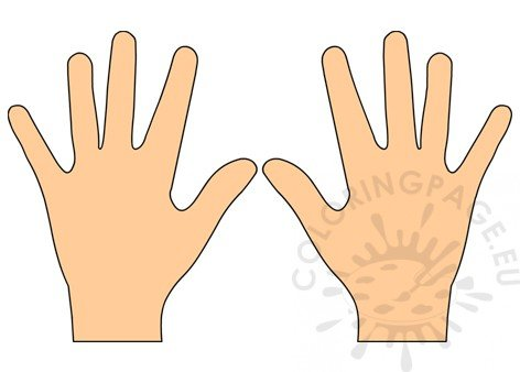 Left hand right hand clipart.