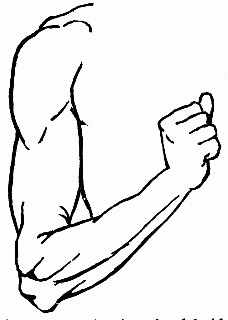 Clipart Black And White Arm.