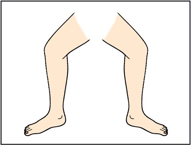 Legs clipart.