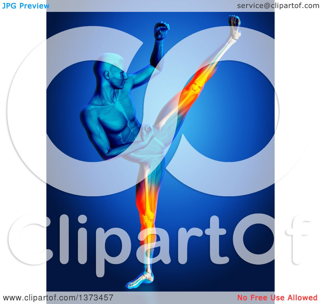 Clipart of a 3d Blue Anatomical Man Kick Boxing, with Visible.