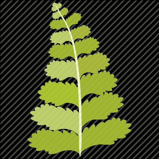 Bean, fabaceae, frond, leaf, legume, pea icon.