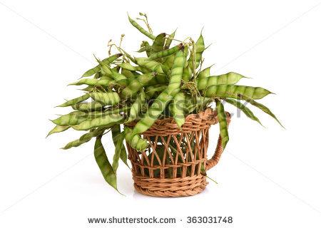 Pea Plant Stock Photos, Royalty.