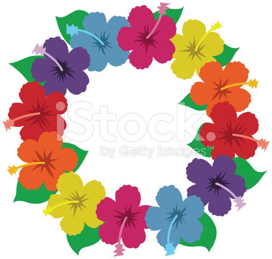 Beautiful stylized hibiscus flowers arranged in a circle.