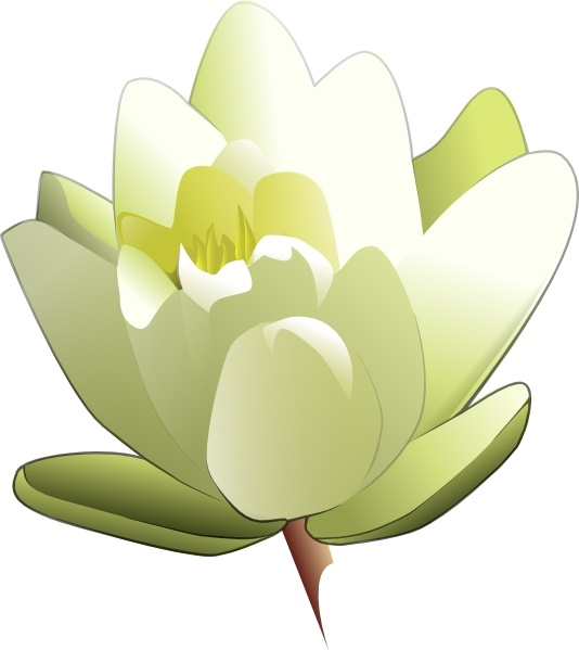 Leland Mcinnes Water Lily clip art Free vector in Open office.