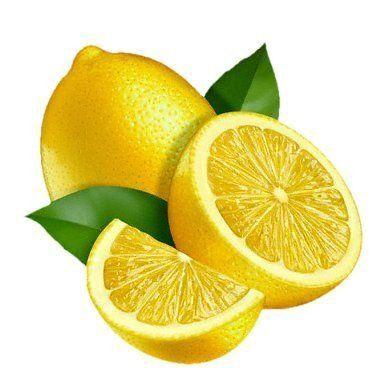 Free Lemon Clip Art Pictures.