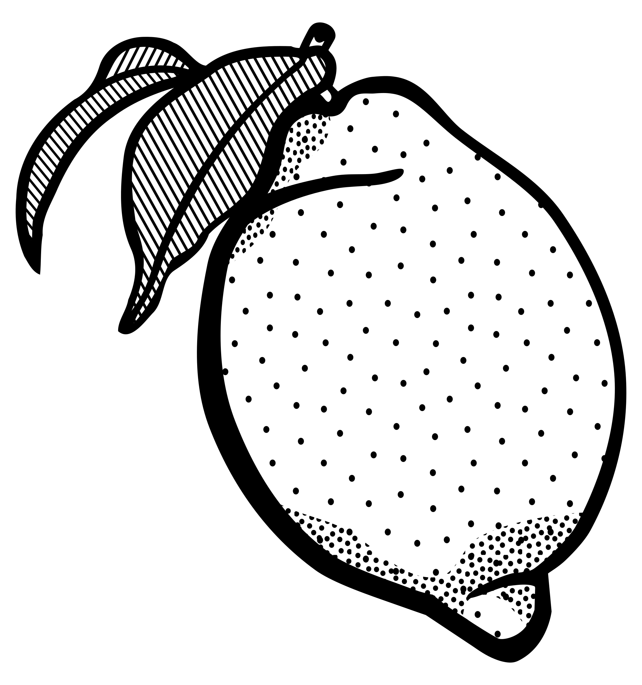 lemon black and white clipart clipground